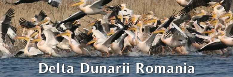 Cazare Delta Dunarii