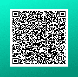 Cod QR Euro Team Travel