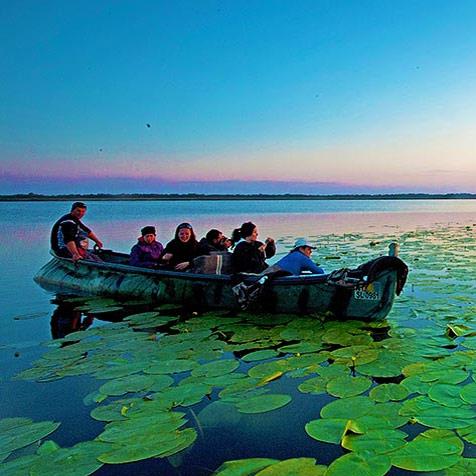 Excursie Delta Dunarii 2 nopti