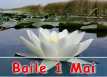 Cazare Baile 1 Mai